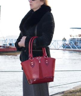 Poseta Cristina - red